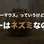 「デグーマウス」っていうけど、デグーはネズミなの?→ちがいます