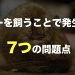 デグーも動物なのです。デグーを飼うことで発生する、7つの問題点