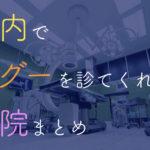 東京都内でデグーを診てもらえる動物病院をまとめてみた