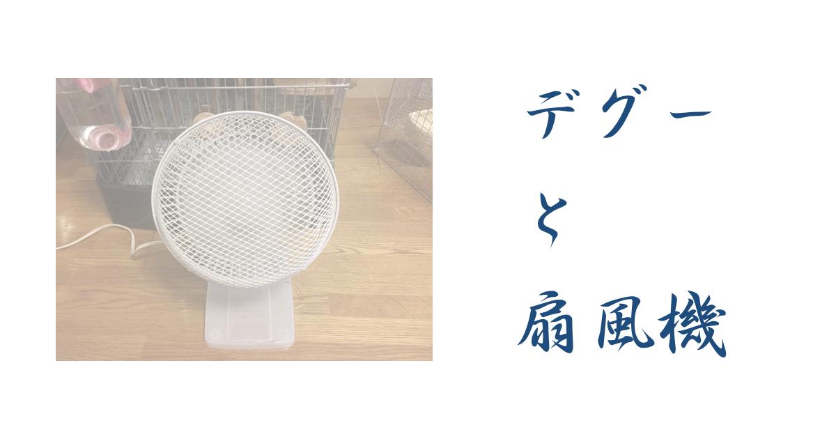 デグーに扇風機は役に立たない?