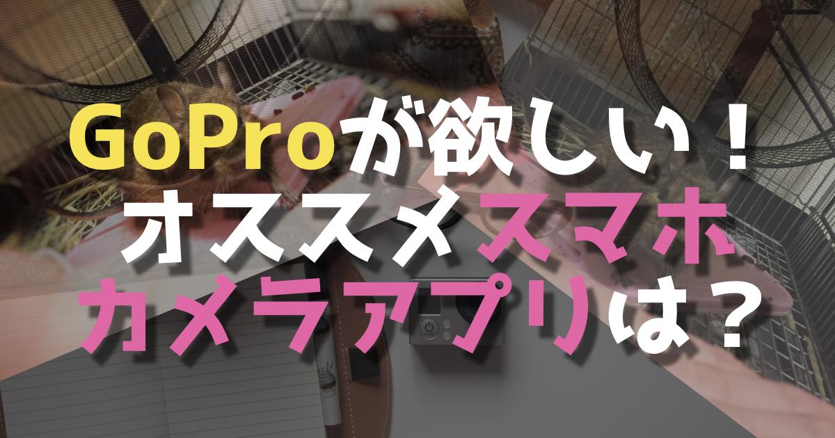 デグー撮るのにGoProが欲しいけど・・・&おすすめスマホカメラアプリ