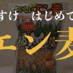 デグーに大人気!!「マルカン おいしいムキえん麦」を買ってみた!!!