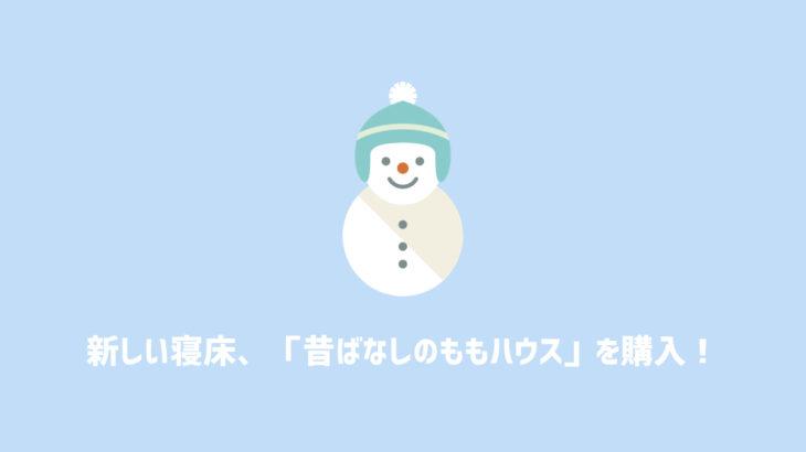 【寝床】SANKO【昔ばなしの ももハウス】を購入!大人のデグーには少し小さいかも【商品レビュー】