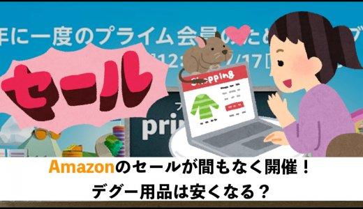 Amazonのセールが間もなく開催!デグーグッズは安くなる?