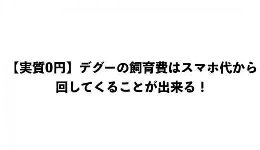 【実質0円】デグーの飼育費はスマホ代から回してくることが出来る!